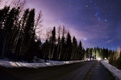 Getting lost in the stars [Explored] (Tasha Mare) Tags: road blue trees winter sky white snow canada motion black cold calgary marie night way stars photography cool nikon long exposure purple time galaxy alberta extended bragg milky tasha thephotographyqueen tashamariephotography teapalm