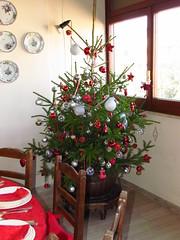 Natale 2011 (cepatri55) Tags: christmas tree weihnachten navidad jul nol albero natale nadal milad kerstmis nollaig joulu 2011 vnoce  kersfees eguberria  cepatri cepatri55   kaliedas mavlud annollaig  christusfees  weihnchtn
