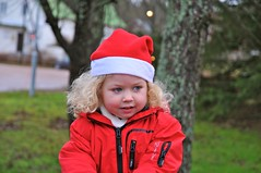 Julen 2011 på Föglö - 39 (Peter Lindén) Tags: jul julafton degerby fö̈glö