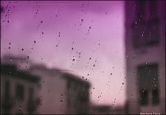 Purple Rain (Barbara Fi@re) Tags: rain ma tears purple palermo viola pioggia sicilia citt vetri palazzi lacrime forsenonsaradomani piovepisulipisuli