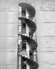 spiral (harry harris) Tags: bw halfframe week36 spiralstaircase ilfordfp4 fujicahalf 52cameras scannedbyppp ueaarchitecture