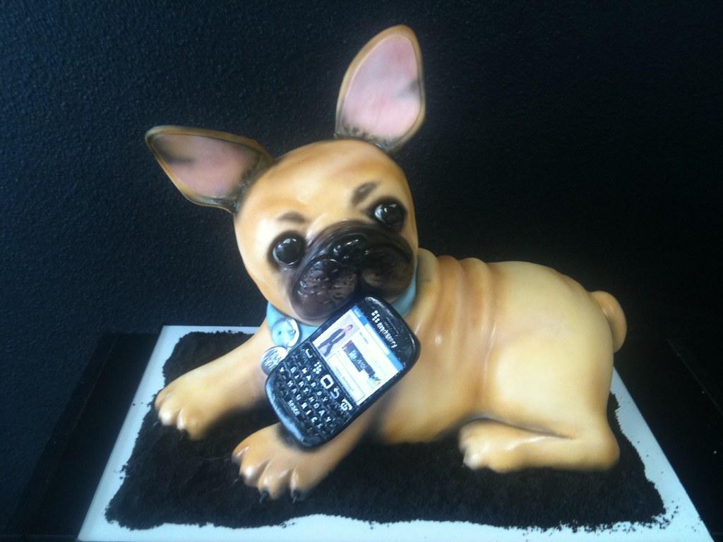 French Bull Dog Gimme Some Sugar Vegas Tags Birthday