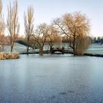 Windlesham-Arboretum-Winter-2-6x7