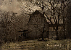 Barn in Huttonsville (Denise @ New Mercies I See) Tags: texture sepia barn ru