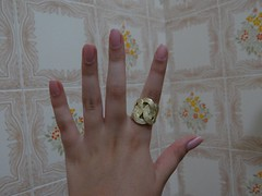 (sarinags_) Tags: nail rosa hits impala lorena buquê rosinha novela capricho coleção esmalte cintilante clubedoesmalte avidadagente