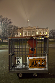 Witness Against Torture: The White House