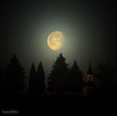 (tozofoto) Tags: trees light shadow moon church canon landscape bravo hungary moonlight zala supershot tozofoto saariysqualitypictures fleursetpaysages