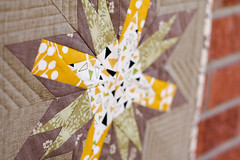 Washington Star Mini Quilt (Jeni Baker) Tags: modern quilt handmade sewing quilting stitching block quilts crafting