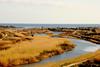 Panorama Cedrino (simon.photo12) Tags: river landscape fiume orosei cedrino