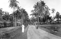 Calboyoz (Calbayog)- South Road, Samar, Philippine Islands, early 20th Century, 1920s? (J. Tewell) Tags: samar calbayog calboyoz