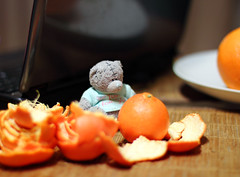 Good mood vitamins :-) (KaterRina) Tags: bear toy 50mm14 mandarins oneobject365daysproject pukatukas
