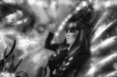 Soul Reflection (darks adria) Tags: life new bw butterfly transformation secondlife change blackwhitephotos