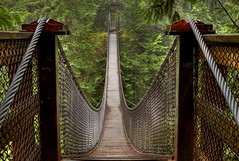 Lynn Creek Suspension Bridge (gordeau) Tags: bridge bc suspension symmetry lynn gordon top20favourites northvancouver ashby flickrchallengegroup flickrchallengewinner thechallengefactory thepinnaclehof kanchenjungachallengewinner gordeau tphofweek180