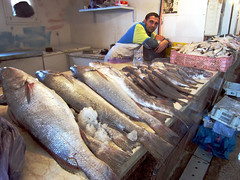 Fish Monger, Dakhla