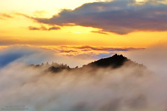 FairylandLegend (Singer ) Tags: sunset sky mist tree fog clouds canon taiwan singer   taipei      seaofclouds            cloudfall        singer186
