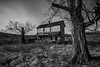Orpheus (dpietzuch) Tags: ohio white house black abandoned rural nikon farm vega lr4 dpietzuch 1635mmf4vr