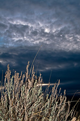(...nickolas...) Tags: sky clouds contrast pentax drama smc 456 28105 littlecottonwood oncameraflash pentaxian pentaxk7