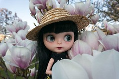 Blythe a Day 20 March 2014 - First day of Spring