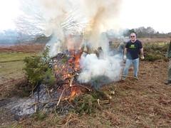 Burning gorse on Purdis Heath