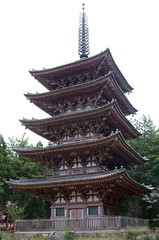 Daigo-ji (ELCAN KE-7A) Tags: japan cherry temple pagoda kyoto treasure pentax blossom national    2014 fivestory   daigoji   k5s