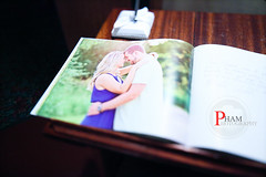 Brittany and Lane's Sign In Book (~Phamster~) Tags: wedding groom bride kiss dress phamster