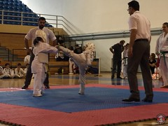 stefanou_15_5_2016_knockdown_147