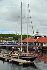 Black Lady (Zak355) Tags: marina scotland pier boat sailing yacht scottish sail pontoons bute rothesay isleofbute blacklady rothesayharbour