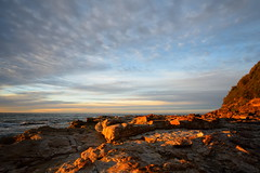 Golden Rocks (Paul Hollins) Tags: seascape sunrise seaside rocks australia shore newsouthwales aus ndfilter swanseaheads nikon1635mmf4 nikond750