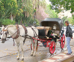 Your Carriage Awaits! ('cosmicgirl1960' NEW CANON CAMERA) Tags: travel vacation holiday spain espana costadelsol andalusia marbella yabbadabbadoo