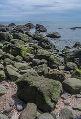 _DSC0442 (johnjmurphyiii) Tags: statepark usa beach spring connecticut madison longislandsound polarization hammonasset polarizedfilter 06443 tamron18270 johnjmurphyiii originalnef