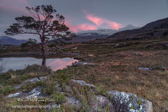Last Hurrah (Shuggie!!) Tags: trees mountains pine clouds reflections landscape scotland highlands rocks williams heather hills karl grasses bluehour hdr gloaming torridon westerross zenfolio karlwilliams