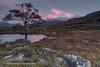 Last Hurrah (Shuggie!!) Tags: trees mountains pine clouds reflections landscape scotland highlands rocks williams heather hills karl grasses bluehour hdr gloaming torridon westerross zenfolio karlwilliams