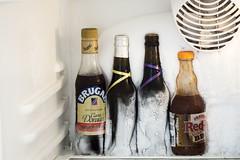 Congelando... (Vi) Tags: gelo ron garrafa puntacana geladeira dominicano cartadorada abril2016 casamentodedia 18042016