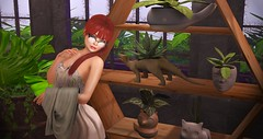 Planter Buddies (Drscythe Resident) Tags: face garden pot fox planter bauwerk terrarium gacha 22769 seedofinspiration succulentosaurus