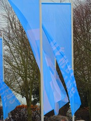 flags (Huo Luobin) Tags: meeting goodwood members 2015 73rd