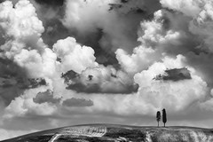 Val d'Orcia skyline #2 (nicola tramarin) Tags: trees sky bw italy tree nature skyline alberi clouds blackwhite italia nuvole natura cielo tuscany cypress siena toscana valdorcia albero bianconero cipressi monocromatico blackwhitephotos nicolatramarin