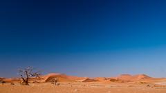 Dunes of Sesriem-Sossusvlei NP | 8