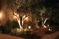 Outdoor Lighting by Robert E. Taft Landscape Architecture (Landscape Design Advisor) Tags: california ca trees architecture landscape losangeles riverside nighttime iridescent southerncalifornia orangecounty frontyard temecula shrubs stonesteps naturalstone outdoorsteps landscapedesign glowinglight stonewalkway outdoorlighting landscapearchitect landscapelighting outdoorlivingspace pathlighting stonegardenwall frontyardlandscapedesign landscapelightingdesign robertetaftlandscapearchitecture outdoorlightingtechniques