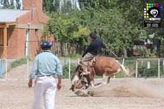 IMG_5710 (sealdeajuste) Tags: festival caballos folklore campo gauchos crespo gaiman chubut gaucho tradicion doma jineteada campodecrespo