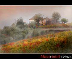 Dopo la pioggia (marcorenieri) Tags: panorama foglie tramonto campagna tuscany toscana nebbia acqua autunno colori pioggia luce marcorenieri