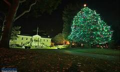 Colton Hall Christmas Tree ([SiK-photo]) Tags: park christmas tree fall grass leaves night canon dark lights bay hall monterey downtown tokina 7d colton ambient ricardo velasquez 1116 sikphotocom