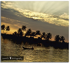 a postcard from God's own country (PNike (Prashanth Naik)) Tags: trees light sunset sky orange india lake reflection water boat nikon asia coconut houseboat kerala ripples rays backwaters boatman alleppey alappuzha d7000 pnike