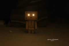 Danbo's watching (aebphoto) Tags: mystery canon dark lights creepy mysterious stare lightup picnik danbo canon50mm niftyfifty eyeslight danboard rebelxsi rebel450d danbolove revoltechdanbo danboeyes danbodark