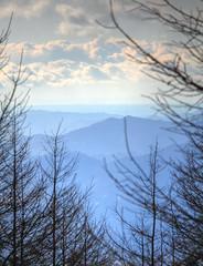 layers #3 (joytrip*) Tags: sky mountain tree japan clouds canon       hdr highdynamicrange mtfuji yamanashi   eos7d canonefs18200mmf3556is  fujisubaruline