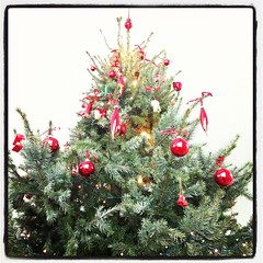 Merry Christmas & Happy New Year! (iBSSR who loves comments on his images) Tags: christmas weihnachten navidad merry jul natale festas boas buon frhliche gledelig kerstgroeten hartelijke instagram bssrhousefeliz