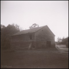 Faded (Scott Farrar - dsfdawg) Tags: old blackandwhite bw white black history abandoned broken barn rural ga vintage georgia holga rust ruins decay farm south country ruin days historic falling southern abandon forgotten 400 plantation historical plus weathered hp5 ilford boarded apart 120n oldsouth bygone reallykindasilver orgreyandwhite dsfotography dsfdawg