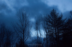 My Beautiful Morning (Vicki Lund Photography) Tags: blue sky clouds sunrise blessings landscapes woods raw december photographer seascapes fineart gift thankful grateful 2011 nikond90 vickilundphotography colorsnatural copywrite wwwvickilundphotographycom