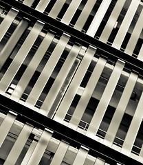 Tough One (nixter) Tags: blackandwhite bw chicago black building net glass lines delete10 canon delete9 delete5 delete2 downtown pattern mesh delete6 delete7 steel patterns save3 delete8 delete3 delete delete4 save save2 il ill 7d delete11 repeating abscract