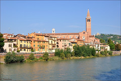 Verona : Chiesa di Santa Anastasia ( 1290 ) - 1/2 (Pantchoa) Tags: italy church river nikon italia fiume chiesa verona nikkor glise adige d90 vrone santaanastasia bellitalia nikonpassion nikonflickraward capturenx2 1685mmf3556 viewnx2