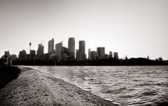 RBG (simondownunder) Tags: panorama night tripod sydney australia australien exchange uts longtime hugin yearabroad